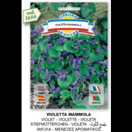 Виола Mammola семена DB