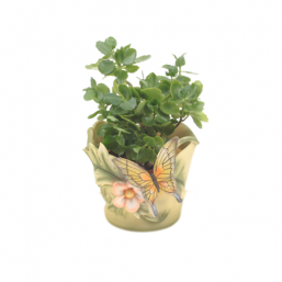Горшок Бабочка на цветке HP101043(5)  GS