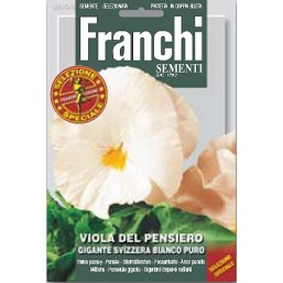 Анютины глазки Gigante Svizzera Bianco Puro, белые (0,5 гр)   Franchi Sementi
