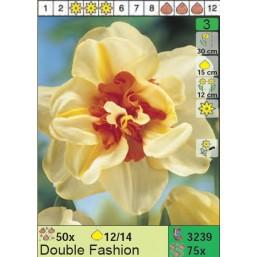 Нарциссы Double Fashion (x75) 12/14 (цена за шт.)