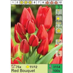 Тюльпаны Red Bouquet (x100) 11/12 (цена за шт.)
