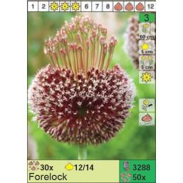 Лук Forelock (x50) 12/14 (цена за шт.)