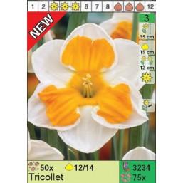 Нарциссы Tricollet (x75) 12/14 (цена за шт.)