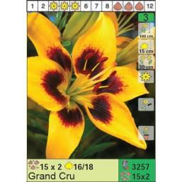 Лилии Grand Cru (x30) 16/18 (цена за шт.)