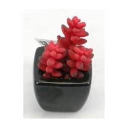 Искусственный цветок Суккуленты в черном горшке (11001)