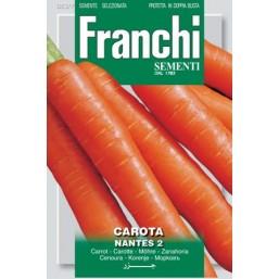 Морковь Nantes 2 100гр.  A 23/7   Franchi Sementi