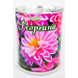 Георгина цветок в банке BONTILAND (метал. банка, универсальный грунт, семена, высота-9,8см, диаметр-7,8см)