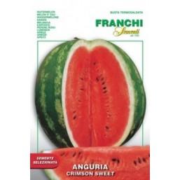 Арбуз GRIMSON SWEET (0,2 гр) 3/6 Franchi Sementi