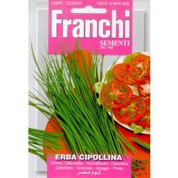 Лук на перо ERBA 50гр  53/1   Franchi Sementi