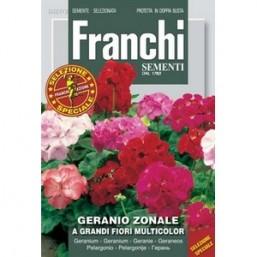 Герань DBFS 327/2   Franchi Sementi