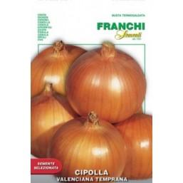 Лук репчатый  Temprana (0,2 гр) 43/42 Franchi Sementi