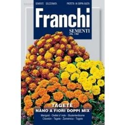 Тагетес карликовый отклоненный, смесь (1 гр)  DBF 353/4   Franchi Sementi