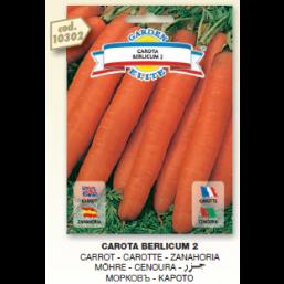 Морковь Вerlicum 2 семена DB