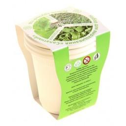 Салатный №1 (петрушка, укроп, портулак) набор для выращивания BONTILAND (3 стаканчика, 3 кокосовые таблетки, семена)