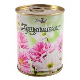 Хризантема цветок в банке BONTILAND (метал. банка, универсальный грунт, семена, высота-9,8см, диаметр-7,8см)