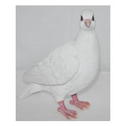 Садовая фигурка Голубь белый BJ132032