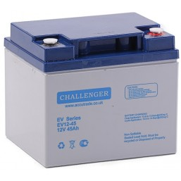 Аккумуляторная батарея Challenger A12-EV12-45