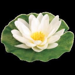 Лилия шелковая белая Ø 15 cм Gardena 07993-20.000.00