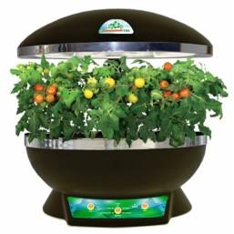 """Черный с черным бассейном гидропонная установка """"Домашний сад"""" BONTILAND(предназначена для выращ.в дом.условиях зелени, цветов, низкор.сортов овощей)"""