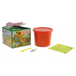 """Горох """"Азбука растений"""" набор для выращивания BONTILAND (горшочек, питательный субстрат, семена, пластиковая лопатка для рыхления)"""