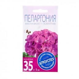 Пеларгония Маверик Виолет 4шт Агроуспех®