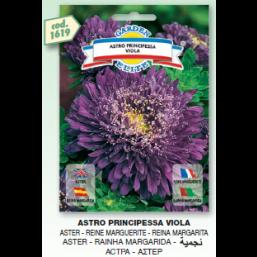 Астра Principessa Viola семена DB