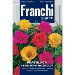 Портулак махровый, смесь (0,5 гр)  VXF345/1   Franchi Sementi