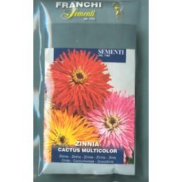 Цинния кактус, смесь (2 гр)  VXF358/2   Franchi Sementi