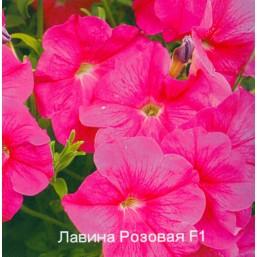Петуния Лавина Розовая F1 CERNY