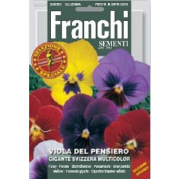 Анютины глазки Gigante Svizzera, смесь (0,5 гр)   Franchi Sementi