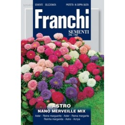 Астра карликовая Nano Merveille, смесь (1 гр)  VXF 304/8   Franchi Sementi