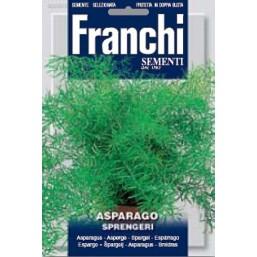 Аспарагус Sprengeri (0,75 гр) DBFS 303/1   Franchi Sementi