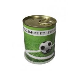 """Газонная травка """"Футбольное поле из банки"""" подар. набор для выращ. BONTILAND (метал. банка, универсальный грунт, семена, высота-9,8см, диамерт-7,8см)"""