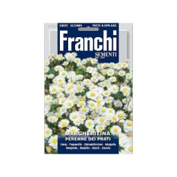 Маргаритки для газона Dei Prati (1,5 гр)   Franchi Sementi