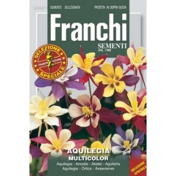 Аквилегия, смесь (1 гр) DBFS 302/1   Franchi Sementi