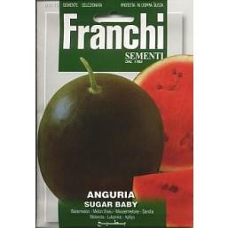Арбуз Sugar baby VXO 3/10   Franchi Sementi