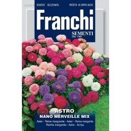 Астра карликовая махровая смесь (2 гр) DBF 304/8   Franchi Sementi