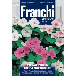 Барвинок Nana Rosea, смесь (0,3 гр) VXF354/20   Franchi Sementi