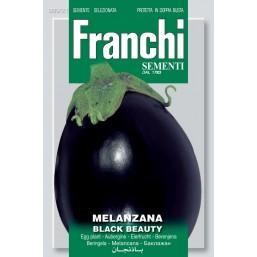 Баклажан Black Beauty (2,5 гр) VXO90/21   Franchi Sementi