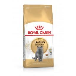 Сухой корм Royal Canin British Shorthair Adult 10kg