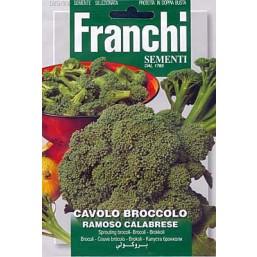Брокколи Ramoso Calabrese (5 гр) VXO 25/23   Franchi Sementi