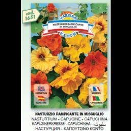 Настурция вьющаяся Rampicante mix семена DB