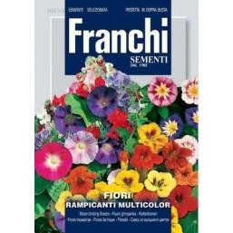 Смесь из вьющихся цветов Rampicanti, смесь (2 гр)  DBF 321/2 Franchi Sementi
