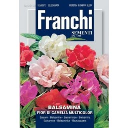 Бальзамин гибридная смесь  DBF (1,5 гр) 305/50 Franchi Sementi