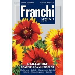Гайлардия крупноцветковая, смесь (1 гр) DBF 324/2   Franchi Sementi