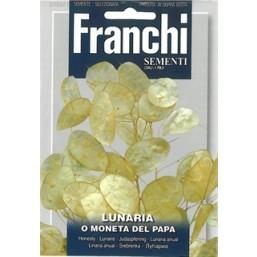 Лунария O Moneta Del Papa (2 гр)   Franchi Sementi