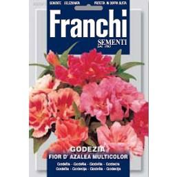 Годеция махровая Fior Di Azalea, смесь (2 гр)  DBF 330/1   Franchi Sementi