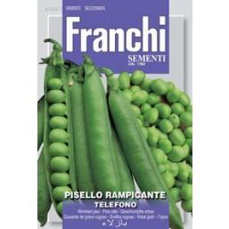 Горошек  TELEFONO VXP 100/1   Franchi Sementi
