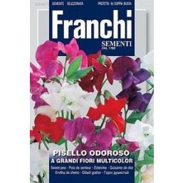Горошек душистый крупноцветковый A Granti Fiori, смесь (5 гр) DBF 344/1   Franchi Sementi