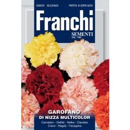 Гвоздика Di Nizza, смесь DBF 325/10   Franchi Sementi